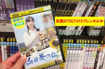 向日葵DVD_edited-2.jpg